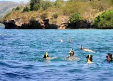 Snorkeling at West Bali National Park