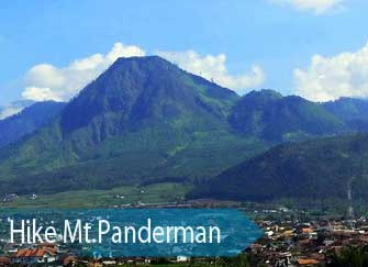 A view at Mt. Panderman - East Java