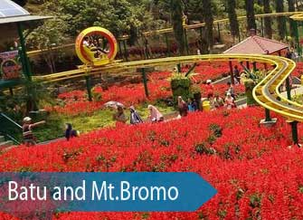 Flower garden at Selecta in Batu - Batu & Bromo tour, 3 days - East Java