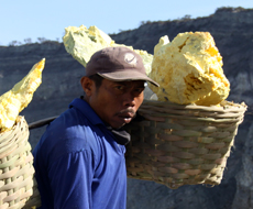 Sulphur miner at the Ijen crater lake carrying a heavy load of about 80 kg - East Java