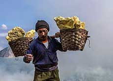 A sulphur miner at Ijen crater rim carrying a basket of sulphur - East Java, Indonesia