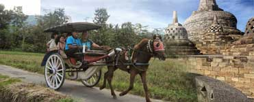 Andong (horse cart) to visit the villages surrounding the Borobudur